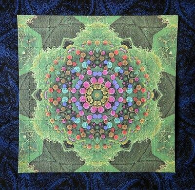 """Blotter Art """"Purple K"""" Psychedelic Collection Perforated Print Paper"""