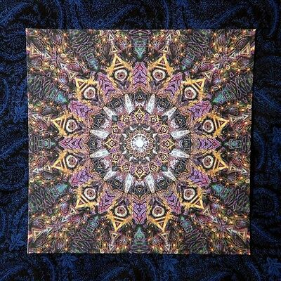 """Blotter Art """"Heavenly Eye"""" Psychedelic Collection Perforated Print Paper"""