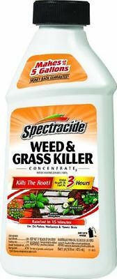 Spectracide Weed & Grass Killer Concentrate - 16-ounces