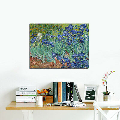 Irises Van Gogh Abstract Canvas Art Picture Painting Print Reproduction Framed