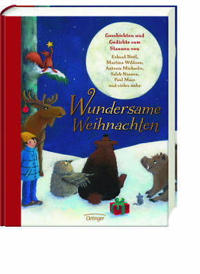 Children's book Miraculously Christmas for Children from 5 Jahre