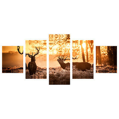 No Frame Photo Canvas Print Poster Landscape Wall Art Home Decor Sunset Deer