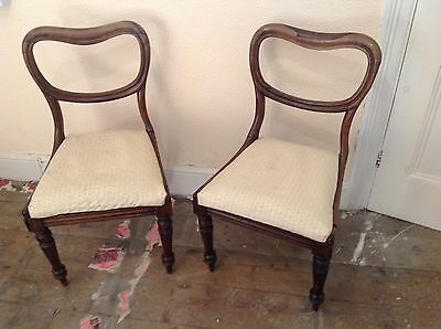 Pair Of Victorian Balloon Back Chairs For Restoration