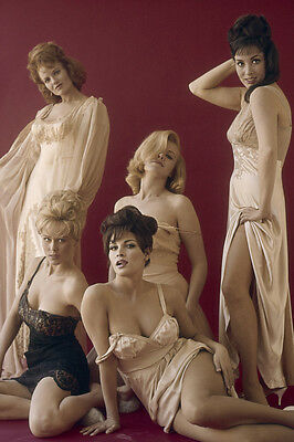 A House Is Not a Home Raquel Welch Edy Williams and girls pose 24x36 Poster