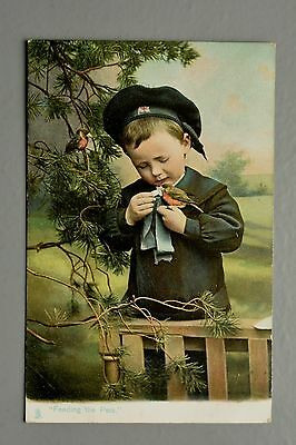 R&L Postcard: Feeding the Pets, Boy in Navy Sailor Outfit Robin Birds, Tuck Pets