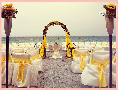 Beach Wedding business for sale with all equipment and website