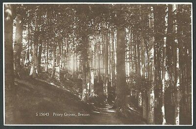 Brecon Powys Priory Groves Vintage WHS Kingsway Real Photo Postcard