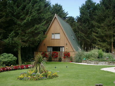 Luxury Holiday PINE LODGE, Apartment, HOT TUB from £150 for 2 people,2- 3 nights