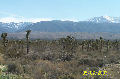 Vacant Lot 5 Acres Land, Llano, Los Angeles County, Gated, Huge Views, 3064.23