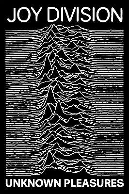"Joy Division Unknown Pleasures Poster Ultra-High Quality MATTE Print 36"" x 24"""