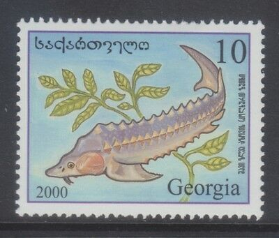 Georgia 2000 - Pesci - Fish - T. 10 - Mnh