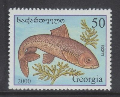 Georgia 2000 - Pesci - Fish - T. 50 - Mnh