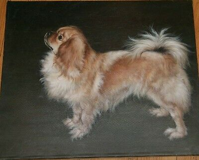 20th Century Original Signed Oil Painting of a Tibetan Spaniel