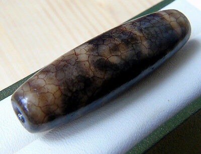 6-eyed Old Rare Dzi Tibetan Natural Agate Fortune Glory Health Wealth