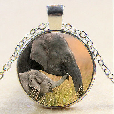 Photo Cabochon Glass Necklace Silver Fashion pendant(elephant)B905