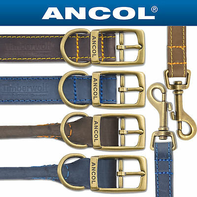 Ancol Timberwolf Leather Dog Collars & Leads all sizes Blue or Sable (brown)