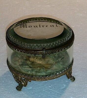 Antique French Ormolu Gilt Bevelled Glass Jewelry Casket Old Montreal Canada