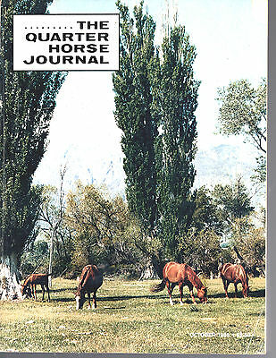 Lot Of 7 1985-1986 The Quarter Horse Journals-6-1986 & 1-1985