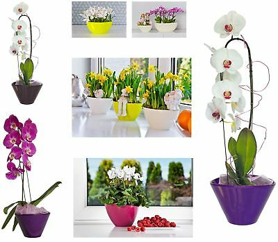 Indoor Outdoor Plastic Plant Flower Pot Garden Home Decor Wedding Oval Shape