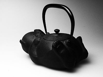 Cast Iron Teapot Kettle Nambu Nanbu Tekki Tetsubin Cat 0.6L OIGEN From Japan