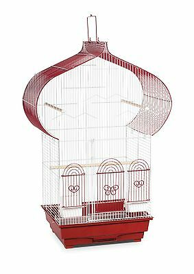 Prevue Hendryx SP1620-1 Casbah Cage Berry and White New