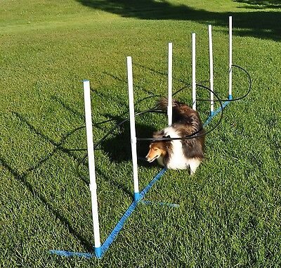 Cool Runners Ultimate Agility Weave Training Solution-Includes 6 Weave Po... New