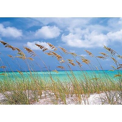 Komar Brewster 8-515 Wall Mural with Paste Ocean Breeze 12-Foot 1-Inch by... New