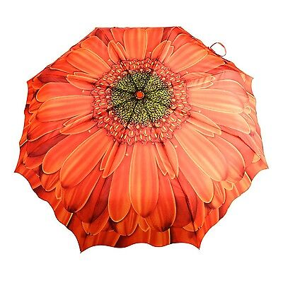 Austin House Orange Gerbera Telescopic Umbrella Orange International Carr... New