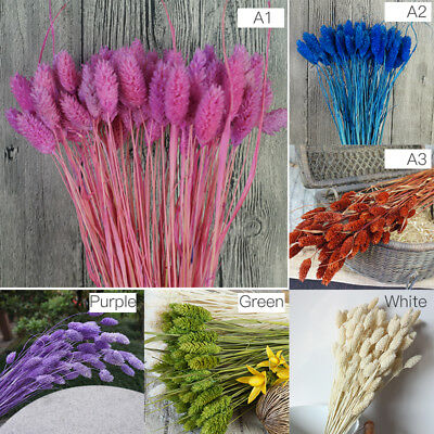 20 Pcs Dried Flowers Bridal Wedding Flower Arrange Garden Home Decor Craft Gift
