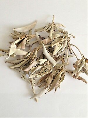 WHITE SAGE CLUSTERS - For Smudging, Purification and Healing - 20g bag