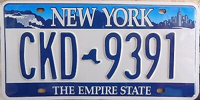 PLAQUE METAL IMMATRICULATION AMERICAINE  - NEW YORK the empire state