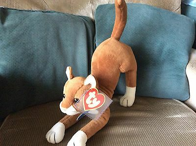 Ty Classic Plush SCRATCH the Cat MWNMT