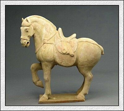 Ancient Chinese Rare Tang Dy Pottery Horse