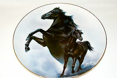 """Fred Stone Painting """"The Black Stallion"""" Plate Horse Racing Collectible 6179"""