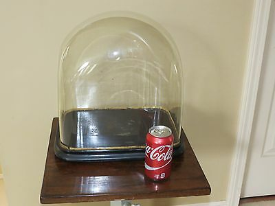 ANTIQUE VICTORIAN RECTANGULAR FRENCH DISPLAY HAND BLOWN GLASS DOME w/ WOOD BASE