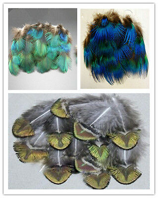 Wholesale 10-200 PCS Delicate peacock feathers DIY accessories Full size