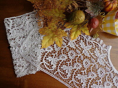 Collector's Antique Schiffli Lace Bodice Insert and Handmade Venice Lace Cuff