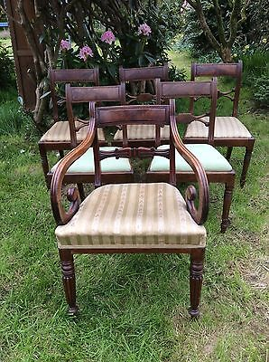 Antique Mahogany Regency Dining Chairs Carver 19th Century
