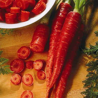 Carrot Seeds Seeds       $1.69 max 200 Atomic Red shipping!