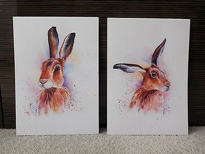2 x A4 Prints Of Colourful Hare Watercolour Painting, Wildlife/Animal Art