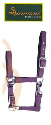 Rumani Polypropylene / PP Soft Padded Halters / Headstalls with Solid Iron Hardw