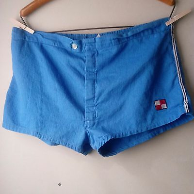 VTG 60s 70s Blue Men's Swim Trunks Shorts Shorties Lined Button and Zipper Large