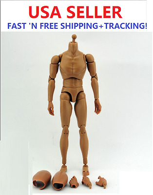 """1/6 Scale ZY BODY 12"""" figure Male Narrow Shoulder with NECK B006 for Head Play"""
