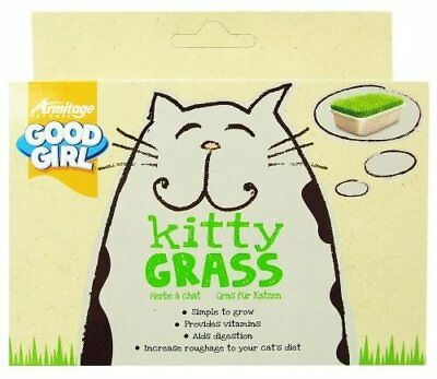 Good Girl Kitty Grass