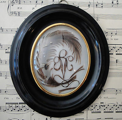 Antique French Mourning Hair Art Domed Glass Oval Wooden Frame Feather c.1880