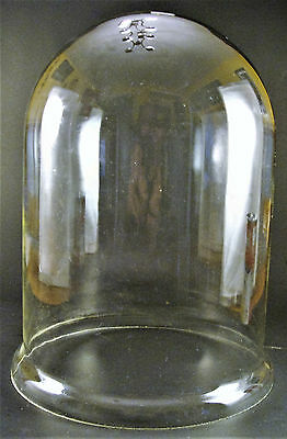 "Large Antique Victorian Glass Bell Jar Cloche Display Dome 10.5"" by 7.5"""