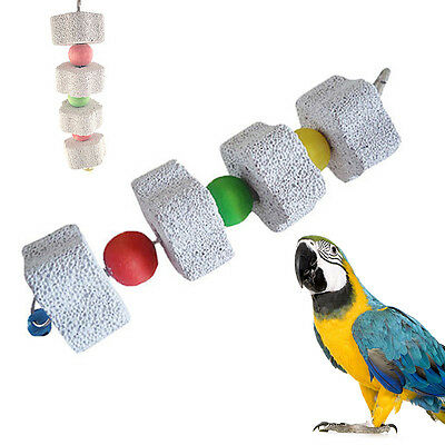 Pet Bird Parrot Swing Cage Grinding Stone for Parakeet Cockatiel Cockatoo Conure