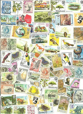 Swaziland Collection Pulled from Stamp Hoard 73 Little Duplication Mint/Used