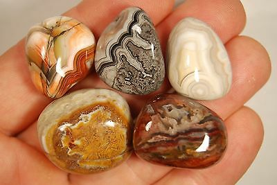 5 CRAZY LACE AGATE TUMBLED STONES 58g *Banded Patterns* Healing Crystals
