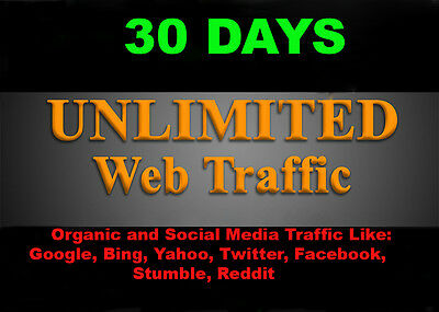 Unlimited Organic & Social Media  Web Traffic for One Month